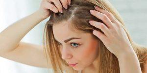 Recopilación de cabello mujer para comprar por Internet – Favoritos por los clientes