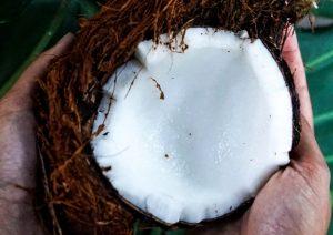Reviews de exfoliante corporal casero con aceite de coco para comprar por Internet – El Top 30