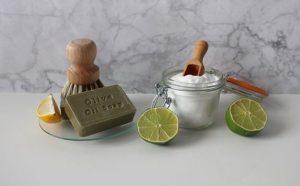 Recopilación de limon cuidados para comprar en Internet