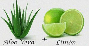 Catálogo para comprar en Internet aloe vera y limon – Los preferidos