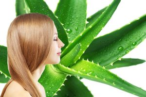 mascarillas caseras para el cabello con aloe vera disponibles para comprar online