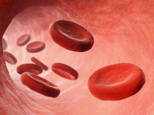 medicamentos para la mala circulacion en las piernas que puedes comprar