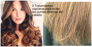 Catálogo de mascarillas para el cabello con puntas abiertas para comprar online