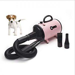La mejor recopilación de secadores de pelo para perros para comprar on-line