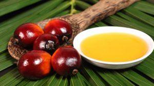 El mejor listado de aceite corporal sin aceite de palma para comprar por Internet