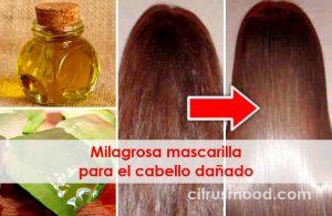 Opiniones y reviews de mascarillas milagrosas para el cabello para comprar