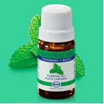 Catálogo de aceite corporal de menta just para comprar online – Los Treinta preferidos