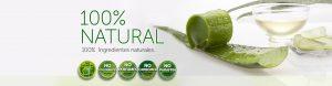 Selección de donde comprar hojas de aloe vera para comprar On-line