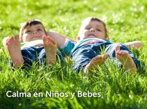 Reviews de aceite corporal aroma blends para comprar on-line – Los mejores
