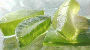 La mejor lista de locion corporal aloe vera puro en gel, atlantia para comprar On-line – El Top Treinta