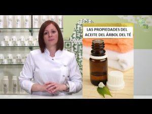 Catálogo para comprar on-line aceite de arbol de te para la caida del pelo