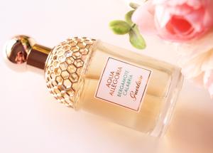 Listado de aqua allegoria bergamota calabria para comprar – Los mejores