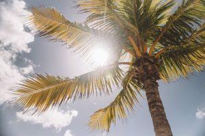La mejor lista de crema solar natural casera para comprar por Internet – Los Treinta más solicitado