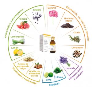 Catálogo para comprar Online aceite corporal slim body – Los 30 mejores