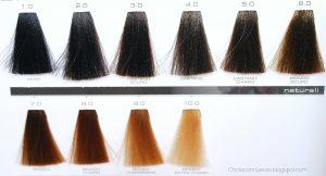 La mejor lista de numeros de tinte pelo para comprar Online – Los mejores