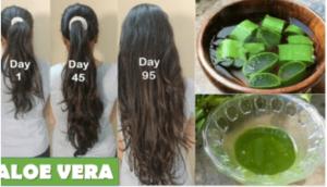 mascarillas caseras con aloe vera para el cabello que puedes comprar Online – Los Treinta más vendidos