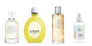 Ya puedes comprar en Internet los crema corporal con olor a talco – Los mejores