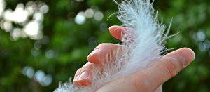 Recopilación de uñas débiles para comprar por Internet – Los Treinta preferidos