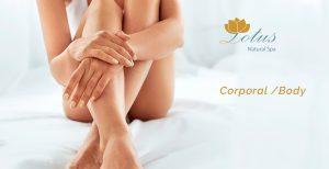 Catálogo para comprar por Internet crema corporal lotus aceites 250 – Los Treinta preferidos