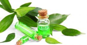 aceite corporal arbol de te que puedes comprar