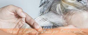 La mejor recopilación de mascarillas naturales para el cabello decolorado para comprar On-line – Los 30 mejores
