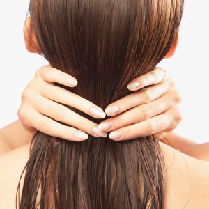 Recopilación de mascarilla cabello aceite de coco para comprar On-line