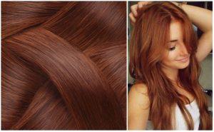 Catálogo para comprar online color avellana tinte pelo