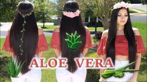 Catálogo para comprar mascarillas caseras de aloe vera para el cabello – El Top 30