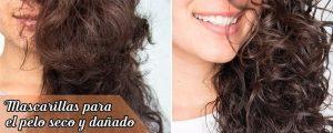 Listado de mascarillas buenas para el cabello seco para comprar – Los preferidos