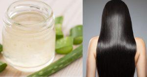 Lista de mascarillas con aloe vera para el cabello para comprar por Internet