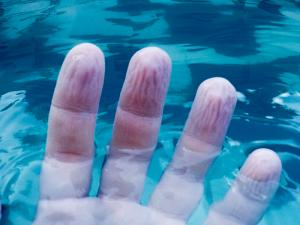manos arrugadas agua rapidamente que puedes comprar On-line – Los preferidos