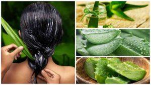 La mejor lista de mascarillas para cabello graso naturales para comprar online – Los preferidos por los clientes