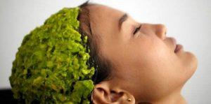 Recopilación de mascarillas naturales para cabello seco para comprar Online – Los mejores